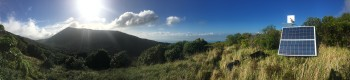 Panoramic view of our Kapiti Island site