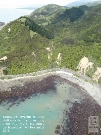 Kaikoura- view from above