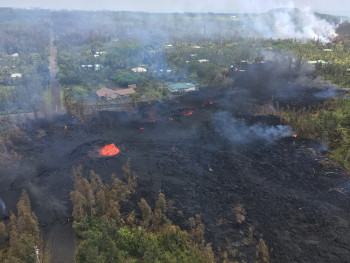 The seventh fissure to open on Kīlauea this past week created a short lava flow that destroyed houses and electric power poles. Additionally, the volcanic gases released (VOG) have affected people's and animals' health. (Photo courtesy of HVO/USGS).